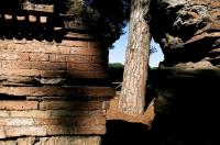 Ostia antica - Miro Gabriele