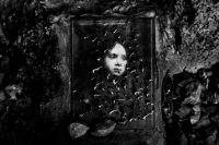Shoah e Postmemoria - Gabriele Croppi