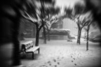 Viaggio nella tormenta - PaoloScarano