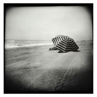 Silent Forms - Candido Baldacchino