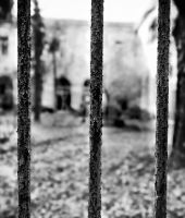 Sidrome Paranoide : B.A.?. - Luigi Montuoro